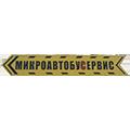 Лого СТО Микроавтобус-сервис