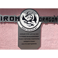 Лого СТО Железный дракон